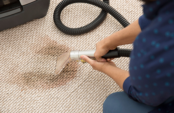 Comparing Chicago Carpet Cleaning Services01